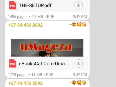 3 Whatsapp Novels